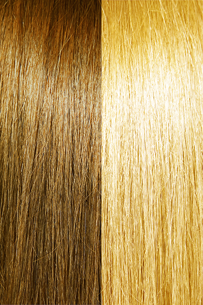 #10/16 – Wheat Brown/Light Honey Blonde