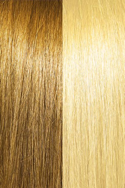 #14/22 – Ashier Wheat Brown/Light Golden Blonde