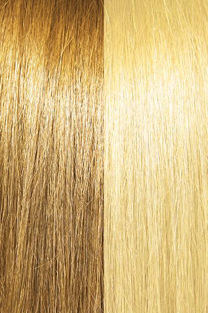 #18/22 – Honey Ash Wheat Brown/Light Golden Blonde