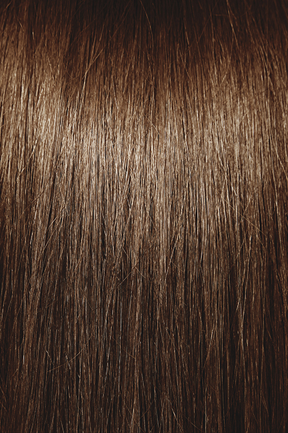 #6 Light Chestnut Brown