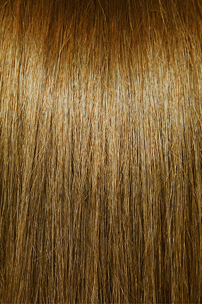 #6 – Light Chestnut Brown